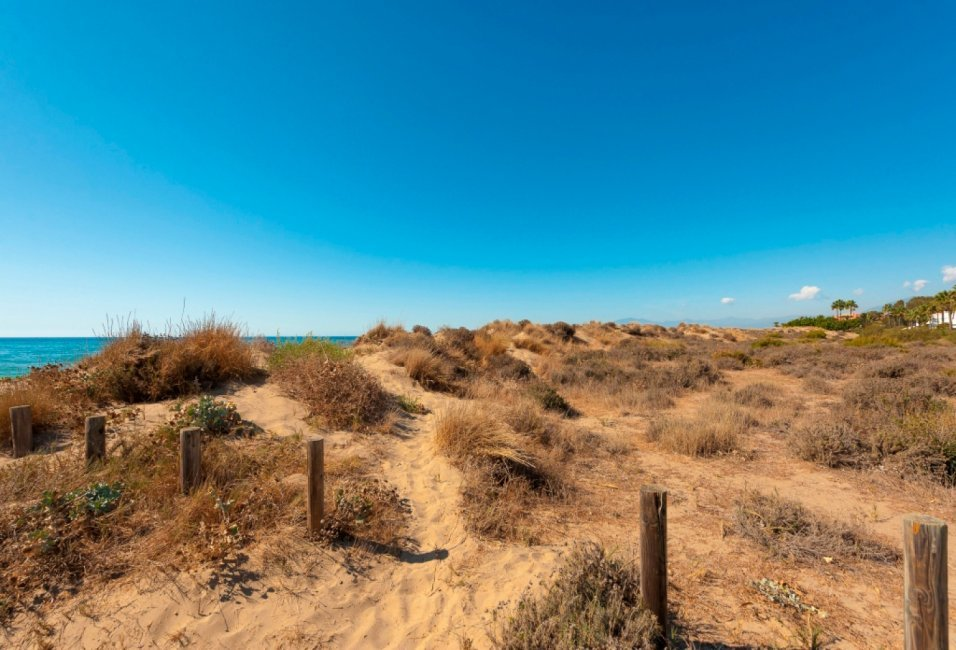 quintessence-entorno-marbella-playa-dunas-1