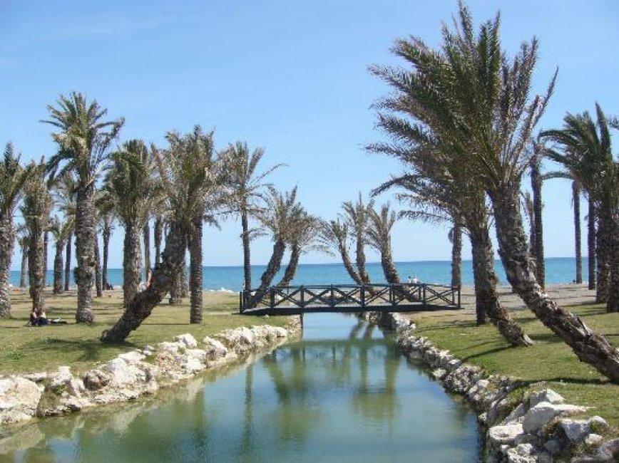 torremolinos-palms